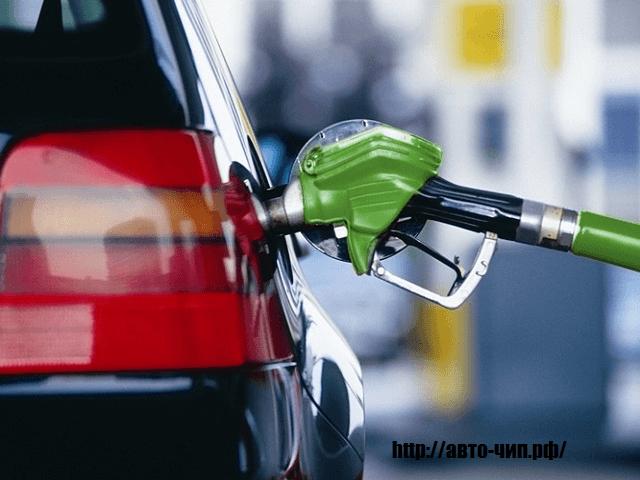 Как узнать какой бензин заливать в машину?