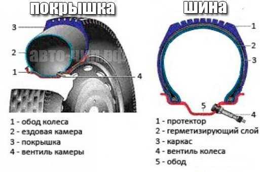 отличие покрышки от шины