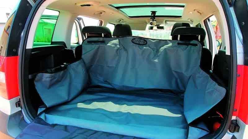 image-(2Как перевозить животных в машине?